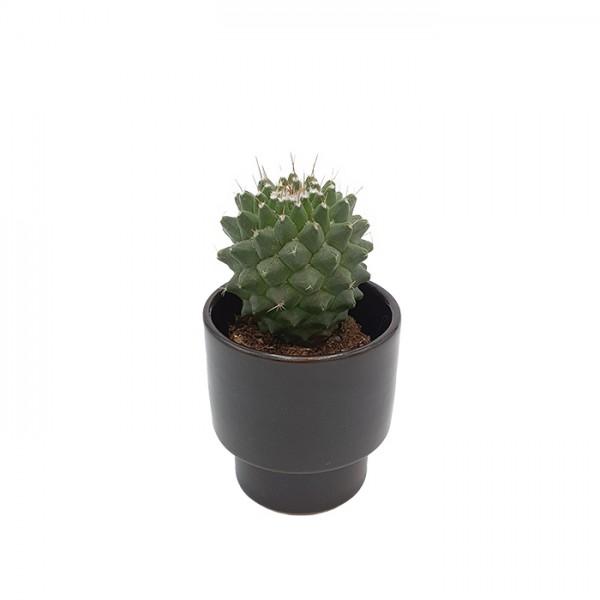 Cup-candleholder-pot Wide black